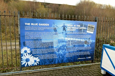 The Blue Garden at Kirkdale 28 December 2017