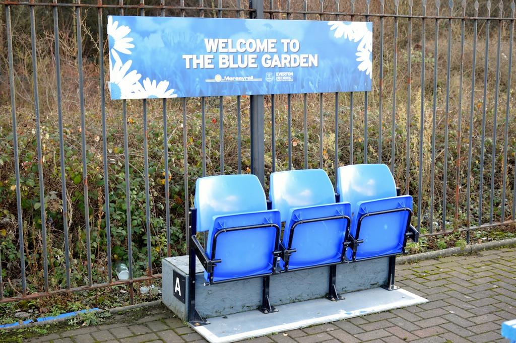 The Blue Garden at Kirkdale 28 December 2017