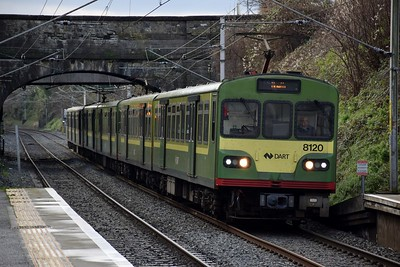 8120 Killester 19 January 2019