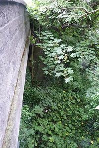 The northern face of the Dublin Road bridge, Shankill. Thursday, 05/07/12