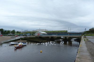 The local swans ignore the northbound DART working as it passes over Bray harbour. Thursday, 05/07/12
