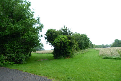 Further north in the park, the view along the original Harcourt Street line towards Bray. Thursday, 05/07/12