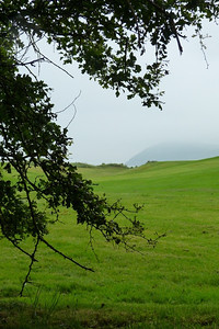 The location of the original junction is now partially on a golf course, and now partially a cliff and the beach just south of Shankill. This is the view towards the coast from the original routing, across the golf course. Thursday, 05/07/12