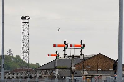 Semaphore signals at Kent Station Cork 5 May 2017
