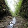 Coal & Iron Tunnel #2 - Glady