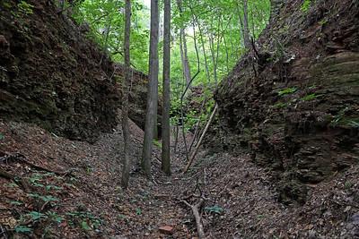 Estelle Mining Co. Railroad Tunnel #5
