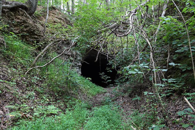 Estelle Mining Co. Railroad Tunnel #4