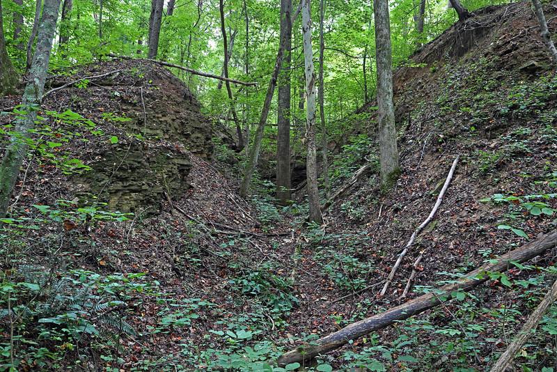 Estelle Mining Co. Railroad Tunnel #3