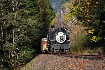 Chelatchie Prairie Railroad