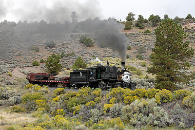 D&RGW 315 at Whiplash Curve