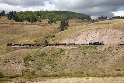 D&RGW 315 approaching Osier