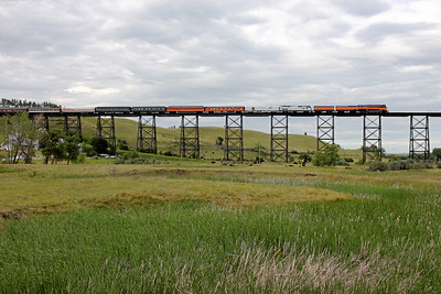 Southern Pacific Daylight 4449 at Minot, North Dakota (Gassman Coulee Trestle)