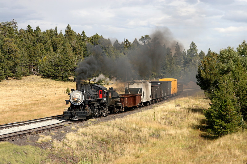SP 1744 takes the siding at Fir (September 2007)