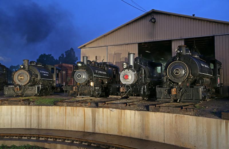 Lehigh Valley Coal 126, Little River 1, Viscose 6 & Flagg Coal 75