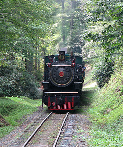 Tweetsie Railroad