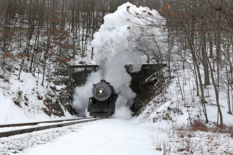 Western Maryland Scenic Railroad