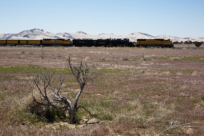 Big Boy UP 4014 in front of the Little Sahara, Utah.
