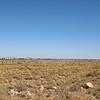 A Westbound intermodal is seen strung out across the desert approaching Canyon Diablo, 10-10-20