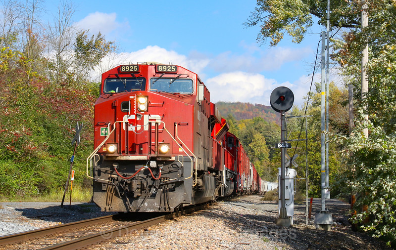 Canadian Pacific train 252 is seen passing the searchlight signals MP 84.5 on the old Delaware & Hudson line at Clemons, New York, 10-6-20.