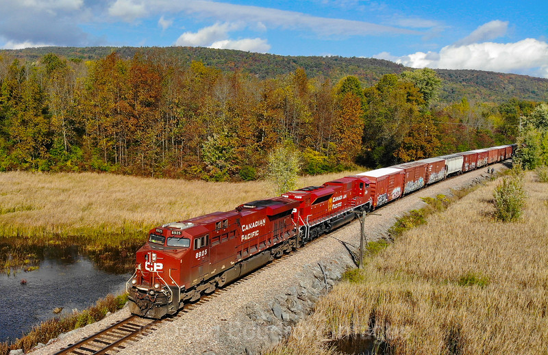 Canadian Pacific train 252 is seen just South of MP 84.5 on the old Delaware & Hudson line at Clemons, NY, 10-6-20.