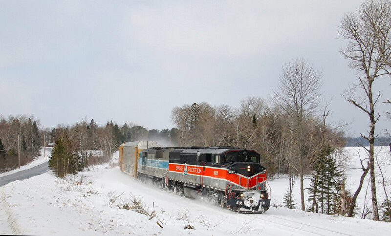 Canadian Pacific Train 250 is seen rounding the curve at Long Pond about to cross Drop In Drive. The CP purchased this line from Central Maine Quebec last year and acquired the SD40-2F locomotives in the sale. Ironically, both the line and the locomotives used to belong to CP. The Bangor & Aroostook heritage unit is in charge today as a system power shortage has been forcing CP to put the classic engines in service, 2-20-21.