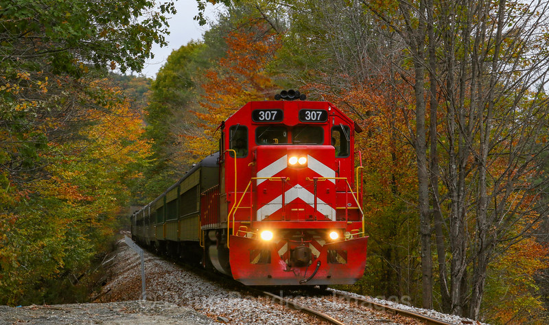GMRC Foliage Extra at Cavendish Gulf, 10-21-18