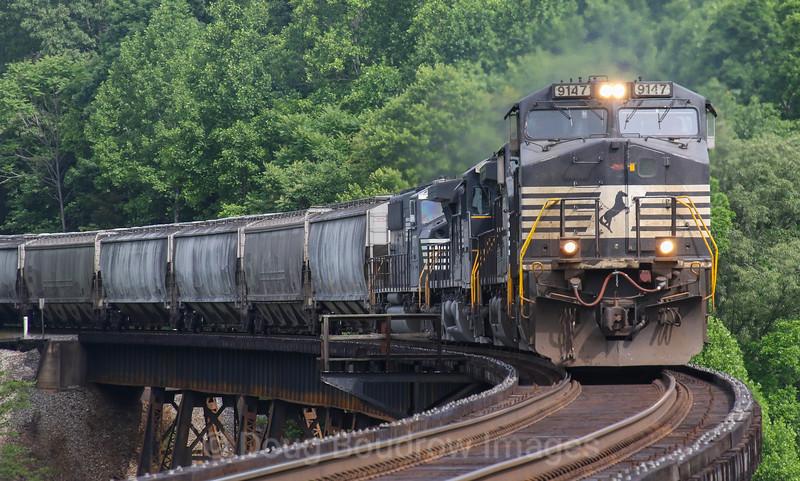 Eastbound grain train 46G crosses Kate's Creek in Goodview, 5-30-17.