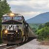 A Northbound empty grain train heads through Rocky Mount, 5-25-17.
