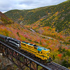 The Mountaineer is seen crossing the 1906 built, 400 foot long Willey Brook Bridge that spans the gap between Mount Willard and Mount Willey in Crawford Notch. As the second week of October begins, the foliage is already fading. High winds have knocked many of the leaves off the trees, 10-8-20.