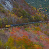 The Mountaineer is seen approaching the 1906 built, 400 foot long Willey Brook Bridge that spans the gap between Mount Willard and Mount Willey in Crawford Notch. As the second week of October begins, the foliage is already fading. High winds have knocked many of the leaves off the trees, 10-8-20.