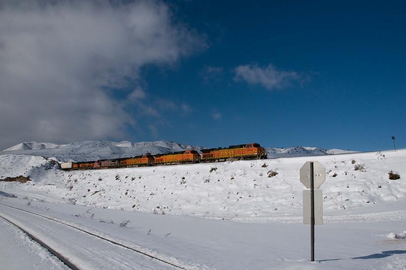 Cajon & Snow #18