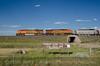 Photo 3855<br /> BNSF Railway; Wright, Wyoming<br /> July 9, 2016