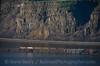 Photo 4048<br /> BNSF Railway; Lyle, Washington<br /> March 16, 2017