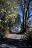 Photo 0360<br /> New Jersey Transit; Gladstone, New Jersey<br /> November 1, 1999