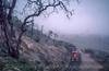 Photo 2956<br /> Atchison, Topeka & Santa Fe; Tehachapi Loop, Walong, California<br /> May 1991