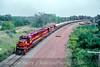 Photo 5206<br /> Duluth, Missabe & Iron Range<br /> Munger, Minnesota<br /> September 1991