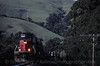 Photo 0646<br /> Union Pacific (Southern Pacific); Niles Canyon, California<br /> March 11, 1999