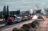 Photo 2966<br /> Southern Pacific; Black Butte, California<br /> April 28, 1991