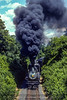 Photo 5028<br /> Canadian Pacific 1238<br /> Linden, Virginia<br /> June 1981