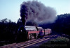 Photo 2625<br /> Norfolk & Western 611; Clifton, Virginia<br /> September 1982