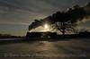 Photo 1087<br /> Pere Marquette 1225; Owosso, Michigan<br /> February 16, 2008