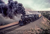 Photo 2920<br /> Union Pacific 3985; Buford, Wyoming<br /> May 26, 1985