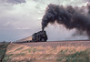 Photo 2918<br /> Union Pacific 3985; Sherman Hill, Wyoming<br /> May 1985