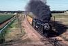 Photo 2969<br /> Union Pacific 8444; Greeley, Colorado<br /> July 1982