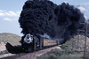 Photo 1417<br /> Union Pacific 8444; Narrows, Colorado<br /> July 16, 1982