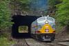 Photo 2082<br /> Delaware, Lackawanna & Western 664 and 663; Nay Aug Tunnel, Scranton, Pennsylvania<br /> June 5, 2011