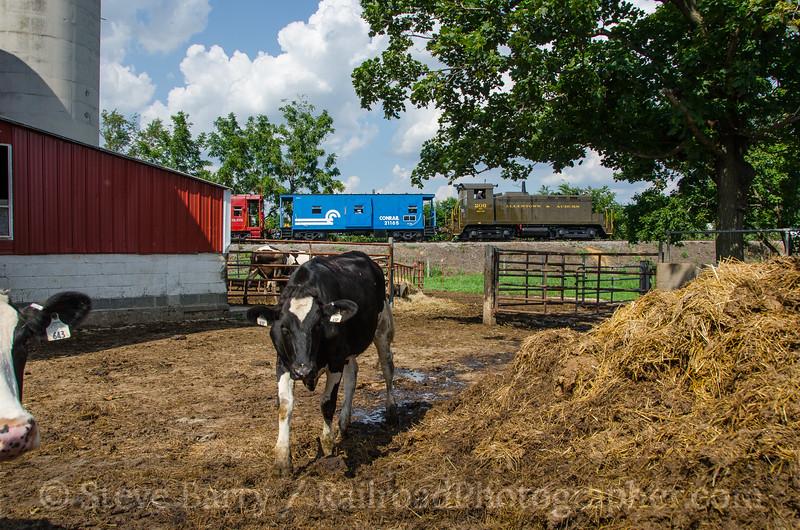Photo 3919<br /> Allentown & Auburn; Topton, Pennsylvania<br /> August 20, 2016