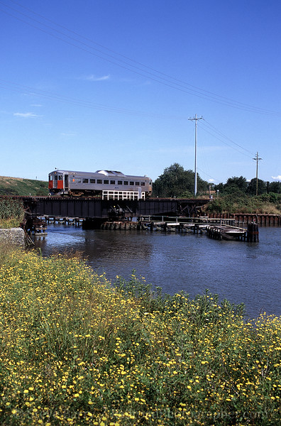 Photo 1327<br /> Cape May Seashore Lines; Cape May, New Jersey<br /> August 2000