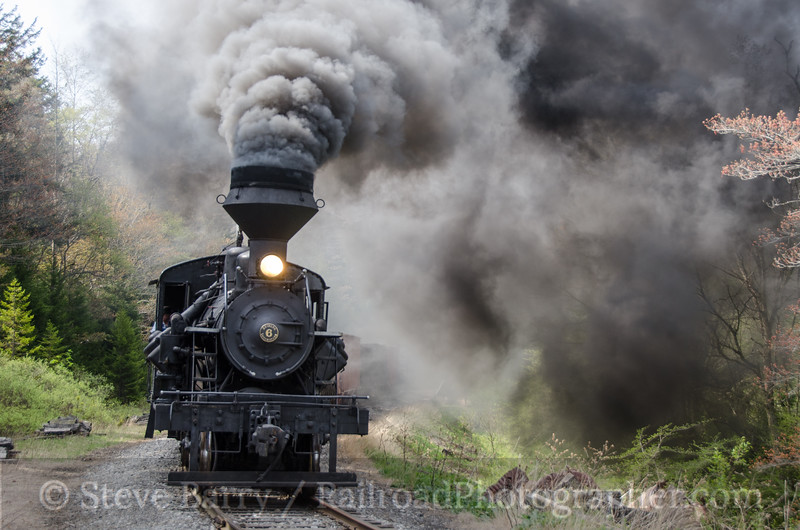 Photo 3404<br /> Cass Scenic (on West Virginia Central); Spruce, West Virginia<br /> May 15, 2015