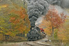 Photo 0784<br /> Cass Scenic; Whittaker Station, Cass, West Virginia<br /> October 16, 2006